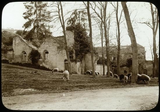 Du côté des Nobis en 1905