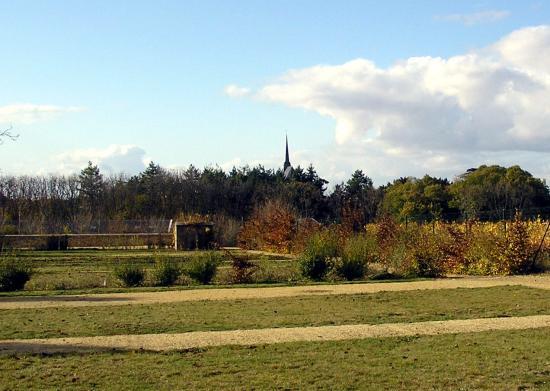Notre Dame vue depuis le cimetière